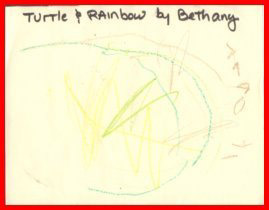 Turtle and Rainbow